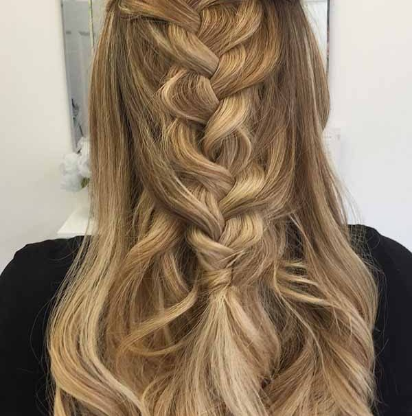 20 Most Gorgeous Plait Hairstyles 2019 | Find The Best One now